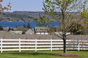 View of White Birch Vineyards and Skaneateles Lake